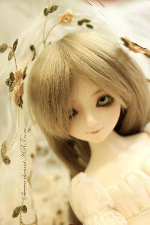 Siceria's avatar.