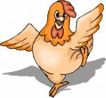 chickensarecool01's avatar.