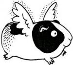 FlyingGuineaPig's avatar.