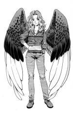 AmazingWingedGirl's avatar.