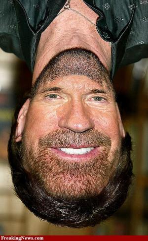 Chuck_Norris's avatar.