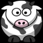 2average2function's avatar.