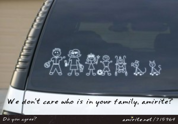 We don't care about your decals representing your family on your car, <strong>amirite?</strong>