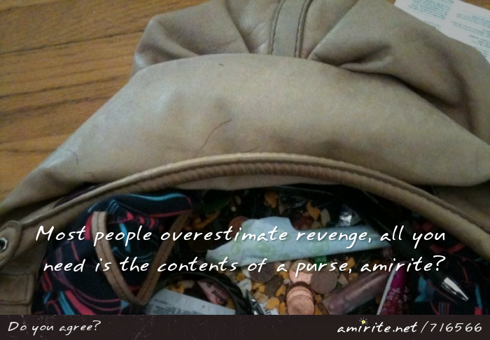 Most people overestimate revenge, all you need is the contents of a purse, <strong>amirite?</strong>