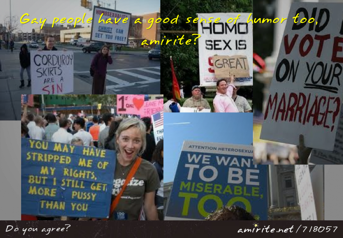 Some pro-gay marriage signs prove that homosexuals have a sense of humour, <strong>amirite?</strong>