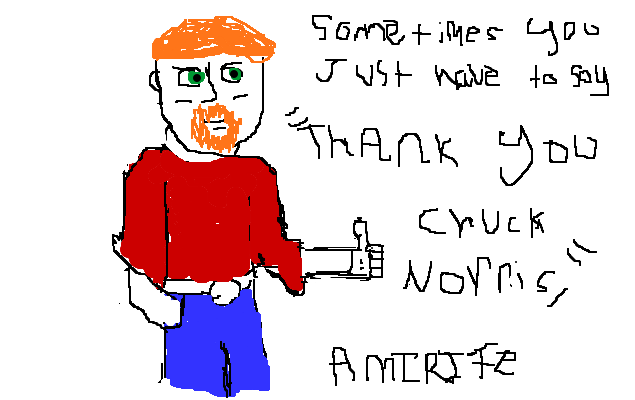 Sometimes you just have to say thank you Chuck Norris