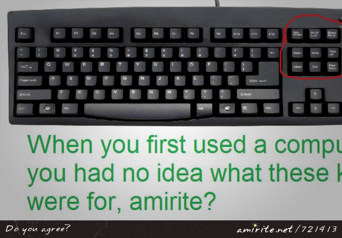 When you first used a keyboard, you had no idea what the keys between the alphabet and the num pad were for, <strong>amirite?</strong>