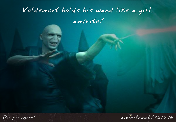Voldemort holds his wand like a girl, <strong>amirite?</strong>