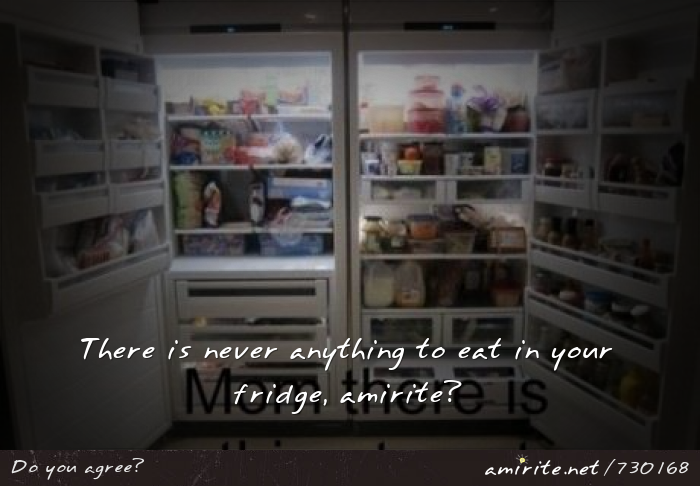 There is never anything to eat in your fridge, <strong>amirite?</strong>