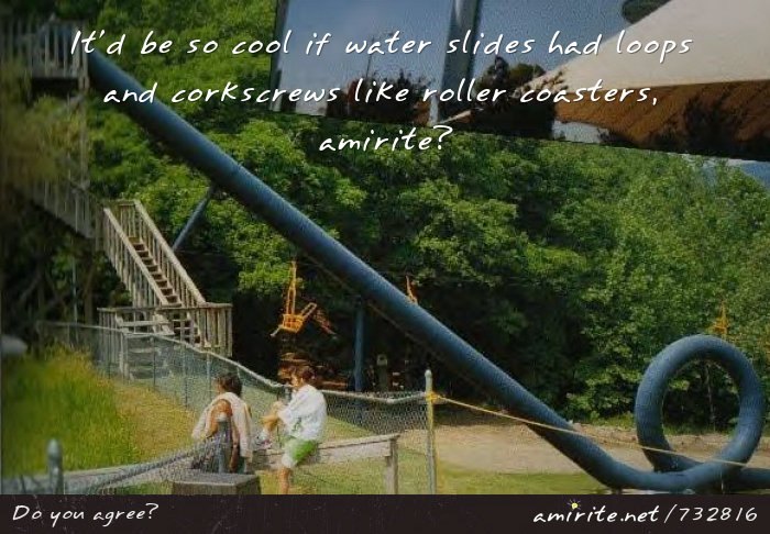 It'd be so cool if water slides had loops and corkscrews like roller coasters, <strong>amirite?</strong>