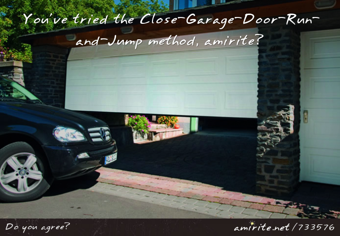 You've tried the Close-Garage-Door-Run-and-Jump method, <strong>amirite?</strong>