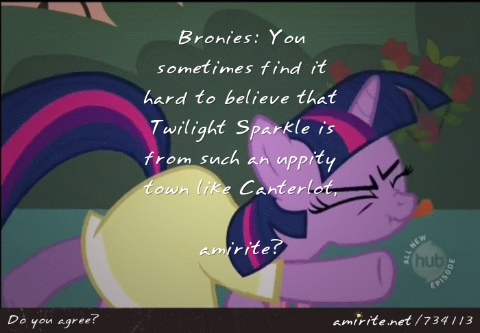 Bronies: You sometimes find it hard to believe that Twilight Sparkle is from such an uppity town like Canterlot, <strong>amirite?</strong>