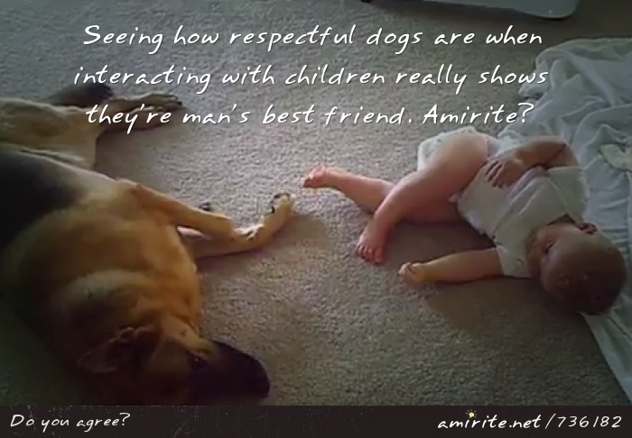 Seeing how respectful dogs are when interacting with children really shows they're man's best friend. <strong>Amirite?</strong>