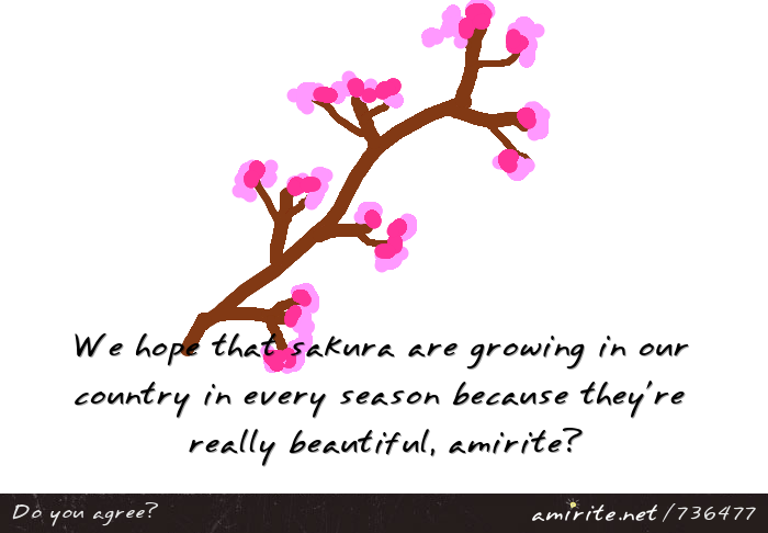 We hope that sakura are growing in our country in every season because they're really beautiful, <strong>amirite?</strong>