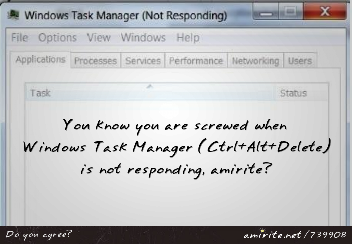You know you are screwed when Windows Task Manager (Ctrl+Alt+Delete) is not responding, <strong>amirite?</strong>