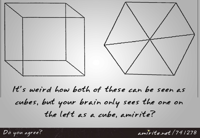It's weird how both of these can be seen as cubes, but your brain only sees the one on the left as a cube, <strong>amirite?</strong>