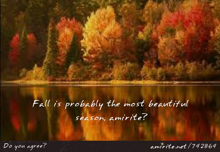 Fall is probably the most beautiful season, <strong>amirite?</strong>