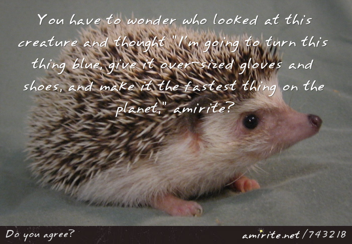 You have to wonder who looked at a hedgehog and though &#34;I'm going to turn this thing blue, give it over-sized gloves and shoes, and make it the fastest thing on the planet,&#34; <strong>amirite?</strong>