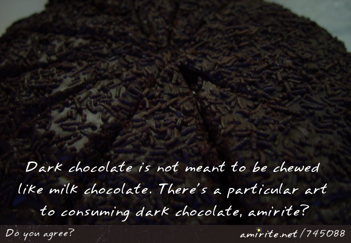 Dark chocolate is not meant to be chewed like milk chocolate. There's a particular art to consuming dark chocolate, <strong>amirite?</strong>