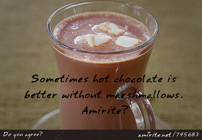 Sometimes hot chocolate is better without marshmallows. <strong>Amirite?</strong>