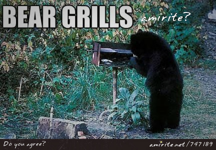 Bears can grill, <strong>amirite?</strong>
