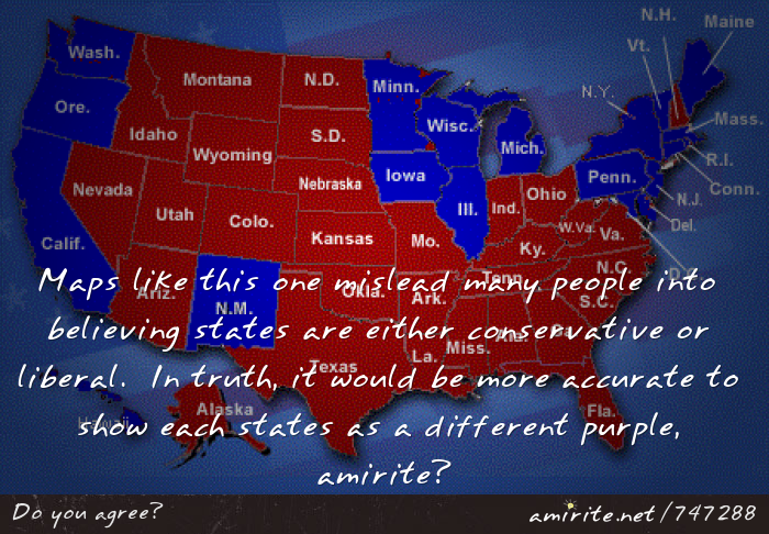 Maps like this one mislead many people into believing states are either conservative or liberal.  In truth, it would be more accurate to show each states as a different purple, <strong>amirite?</strong>