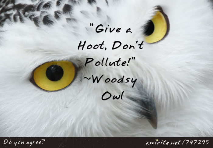 """Give a Hoot, Don't Pollute!"" ~Woodsy Owl"