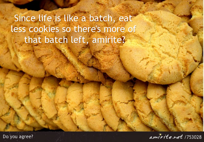 Since life is like a batch, eat less cookies so there's more of that batch left, <strong>amirite?</strong>