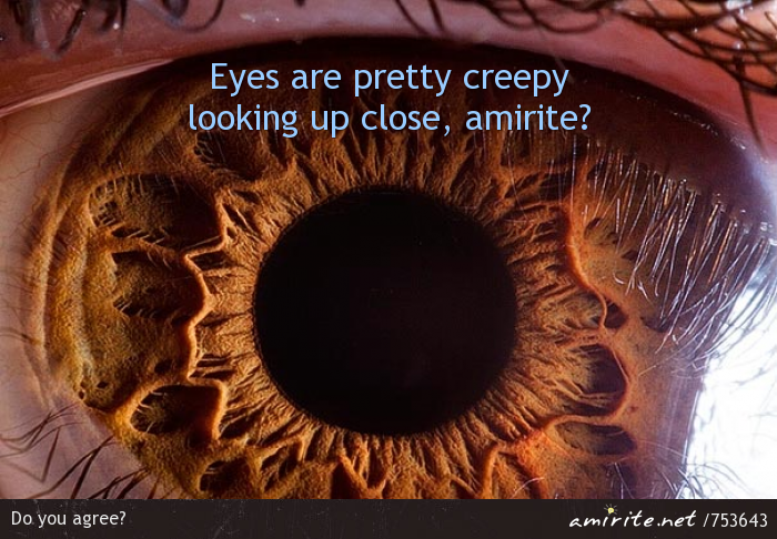Eyes are pretty creepy looking up close, <strong>amirite?</strong>