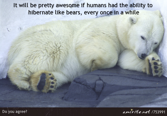 It will be pretty awesome if humans had the ability to hibernate like bears, every once in a while