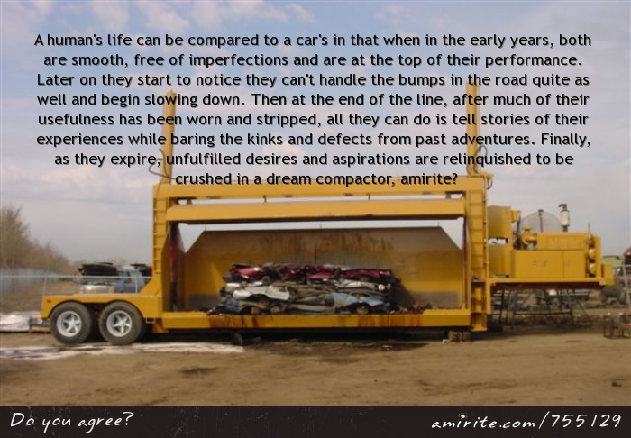 A human's life can be compared to a car's in that when in the early years, both are smooth, free of imperfections and are at the top of their performance. Later on they start to notice they can't handle the bumps in the road quite as well and begin slowing down. Then at the end of the line, after much of their usefulness has been worn and stripped, all they can do is tell stories of their experiences while baring the kinks and defects from past adventures. Finally, as they expire, unfulfilled...