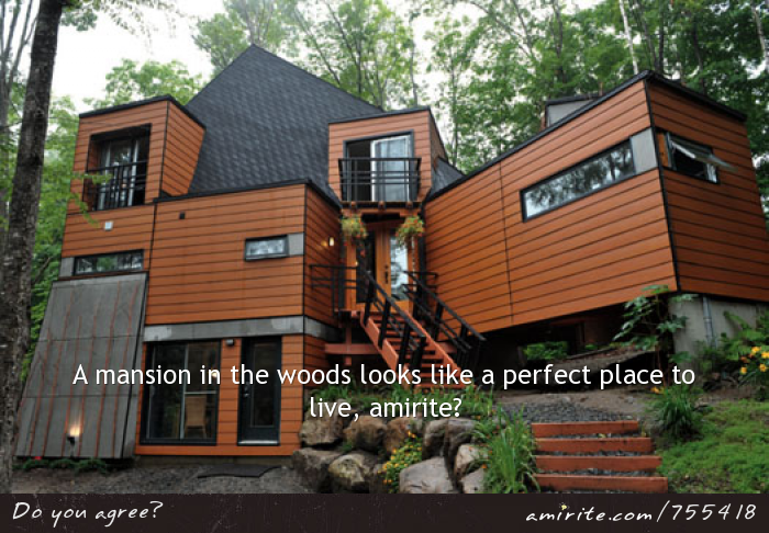A mansion in the woods looks like a perfect place to live, <strong>amirite?</strong>