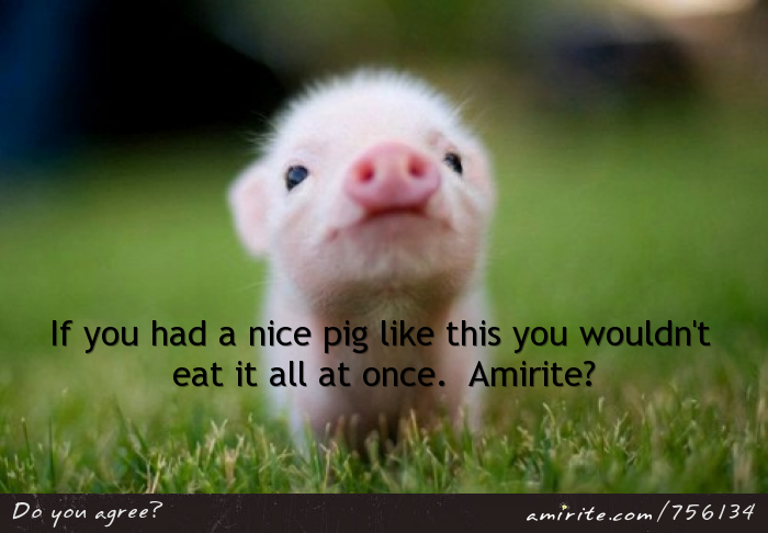 Baby pigs are to cute to eat all at once.  <strong>Amirite?</strong>