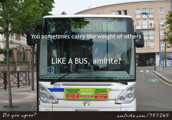You sometimes carry the weight of others, #LIKEABUS, <strong>amirite?</strong>