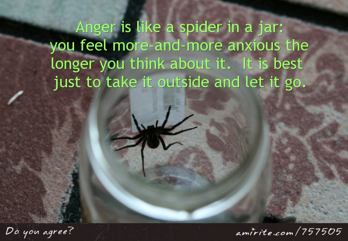 Anger is like a spider in a jar:  you feel more-and-more anxious the longer you think about it.  It is best just to take it outside and let it go.