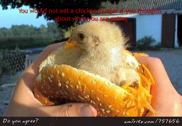 You would not eat a chicken burger if you thought about what you are eating