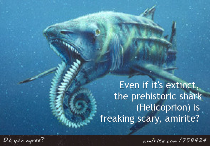 Even if it's extinct,  the prehistoric shark (Helicoprion) is  freaking scary, <strong>amirite?</strong>