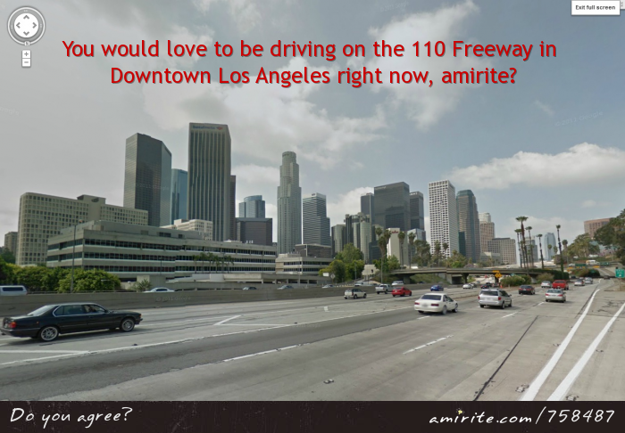 You would love to be driving on the 110 Freeway in Downtown Los Angeles right now, <strong>amirite?</strong>