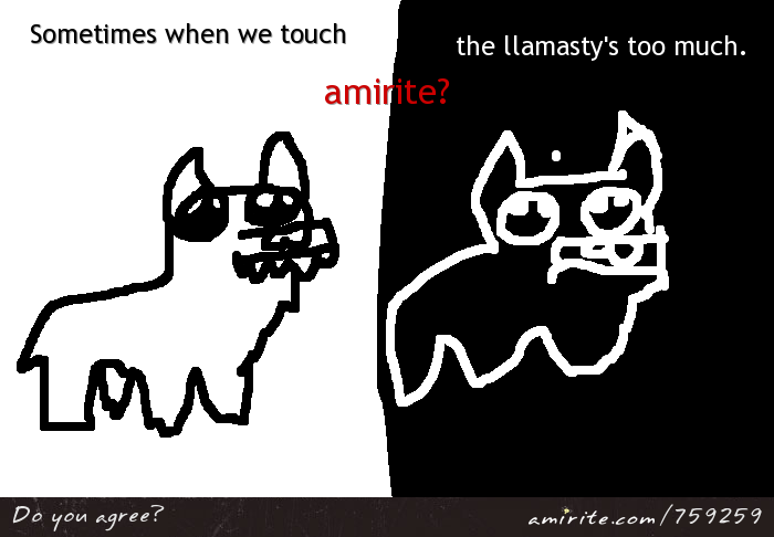 Sometimes when we touch, the llamasty's too much.  <strong>amirite?</strong>