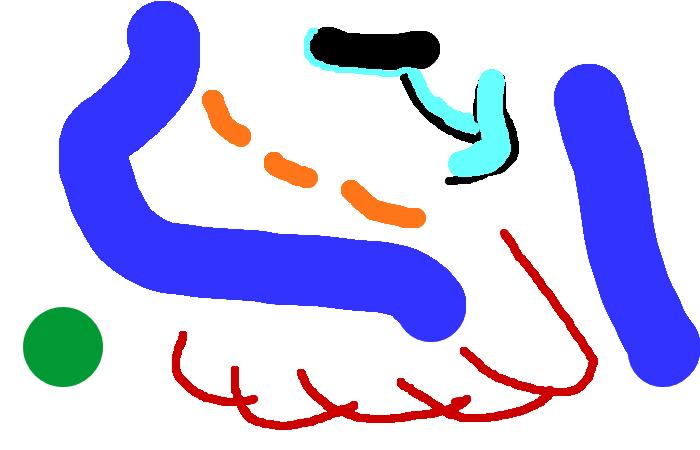 Anyone can draw.