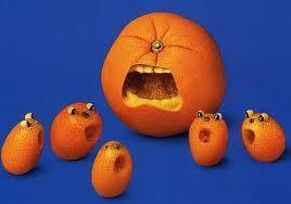 Kumquat's avatar.