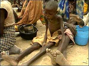 What are the ways to help eradicate starvation in Africa?