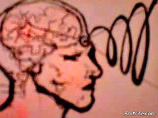Is the conscious brain in the heart & the un conscious brain in the pineal gland ?