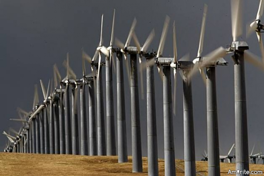 Can we save the birds from wind turbines