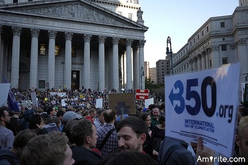 Are Occupy Wall Street protesters smart ?