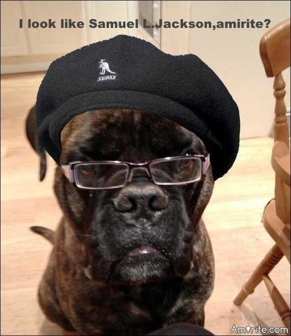 I look like Samuel L. Jackson, <strong>amirite?</strong>