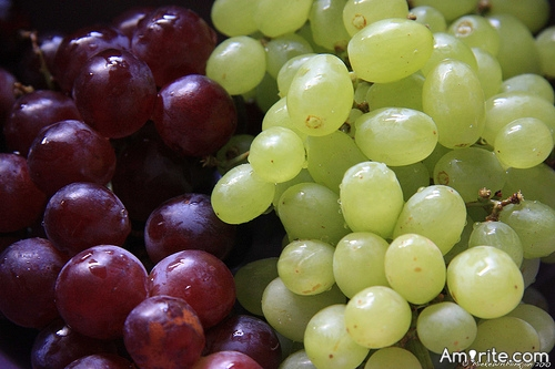 Red or Green Grapes?