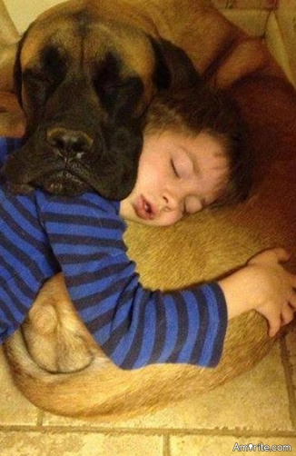 Have you used your pet as a pillow?