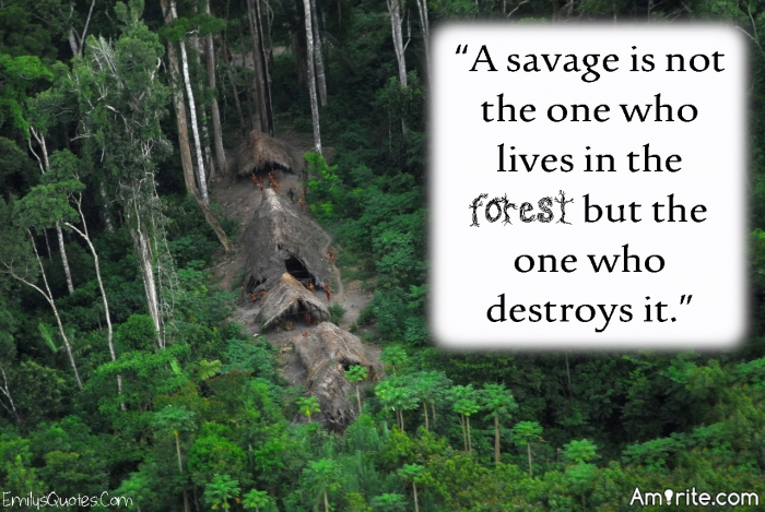 The savages are not the people who live in the forest, but the people who destroy it for profit.