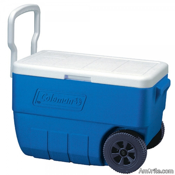 Do you have to take a cooler with you when you go shopping for groceries?